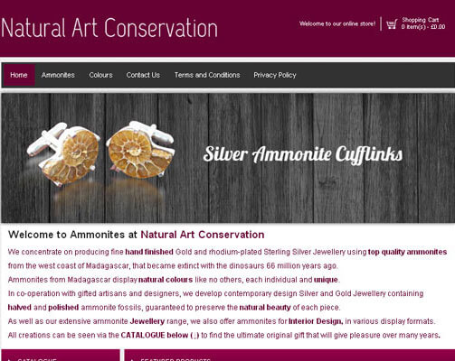 Natural Art Conservation